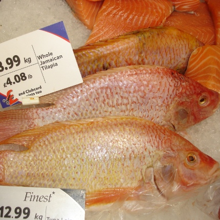 A selection of Jamaican tilapia for sale in a British supermarket. (Photo by Kevin Fitzsimmons)