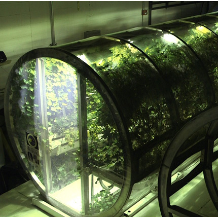 One of four planned lunar greenhouse modules that are being studied at the Controlled Environment Agriculture Center. (Photo by Cody Sheehy)