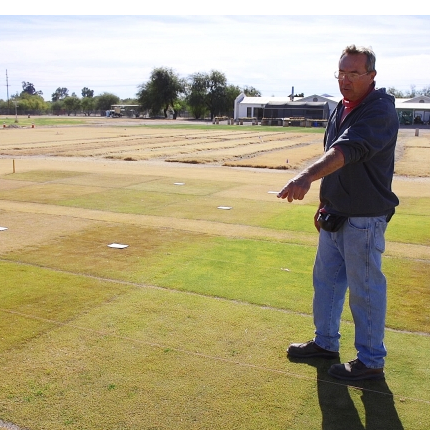Dave Kopec works at developing varieties of turfgrass at the UA's Karsten Turfgrass Research Facility near campus. (Photo: Bob Demers/UANews)