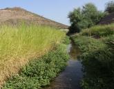 Science Snapshot: Tucson's Effluent-Fed Santa Cruz River Fertile Ground for Microplastic Research