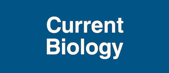cell and molecular biology research papers
